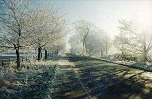 The Avenue, Burton-upon-Stather, after a frost in January 1996