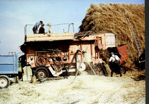 The last threshing day at Crowle Grange, Crowle, with a portable threshing set in September 1979